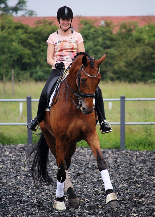 https://manege.prinsenbankhoeve.nl/wp-content/uploads/2018/05/paardrijden-met-plezier-manege-prinsenbankhoeve-wijchen-500x700.jpg